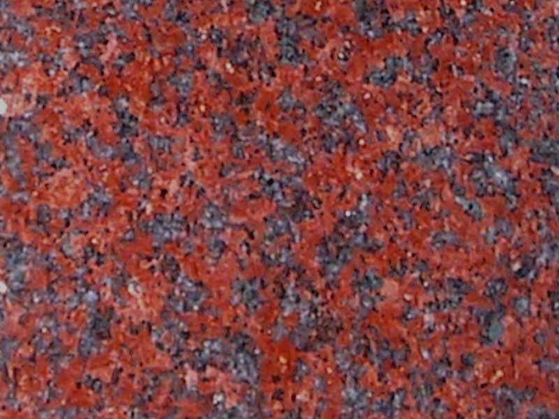 African Red steen
